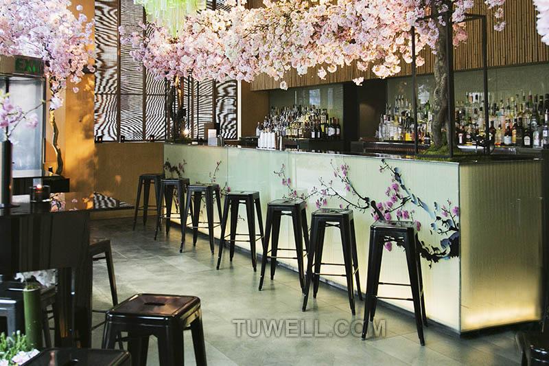 Tuwell-Find Tw8003-l Steel Tolix Barstool | Replica Tolix Chair-12