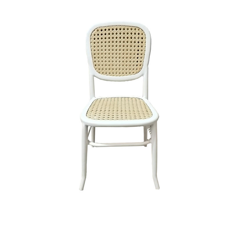 TW8760 colorful and fashion European leisure style PE rattan wicker Metal Rattan Chair